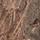 коричневый кмф