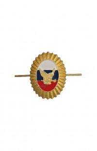 Кокарда ВОХР (Сова с ключом) нового образца